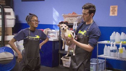 The Carbonaro Effect: Inside Carbonaro